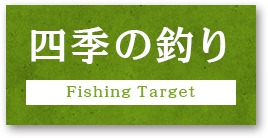 四季の釣り