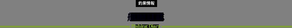 福丸の釣果情報