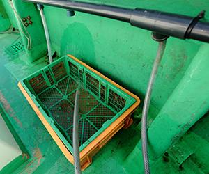 釣座に給水設備